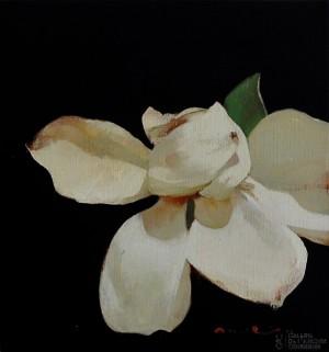 Galerie Montpellier | Magí Puig: Molt fragil I