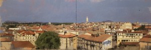 Les toits de Montpellier