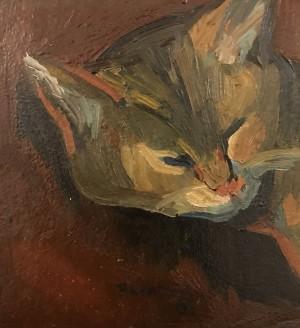 Galerie Montpellier | Richarme: Le chat smah